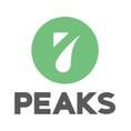 โลโก้บริษัท 7 Peaks