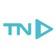 โลโก้บริษัท T.N. Incorporation Ltd.