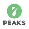 โลโก้บริษัท 7 Peaks Software
