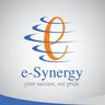 โลโก้บริษัท e-Synergy Co., Ltd.