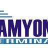 โลโก้บริษัท Namyong Terminal Public Company Limited